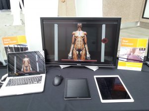 Body Gallery & Heart Display